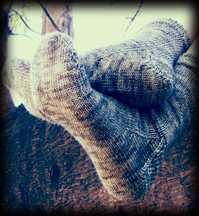 Fingering-weight toe-up socks with heel-flap, shown over log